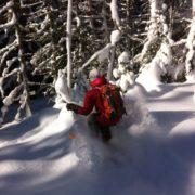 ski de randonnée pour débutant