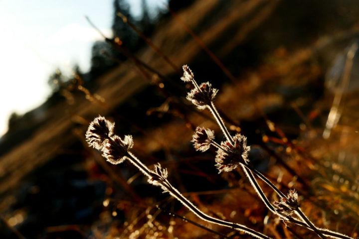 photographie tour du mont-blanc