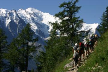 Mont-Blanc depuis la Flégère