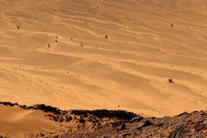 Virée sur Mars