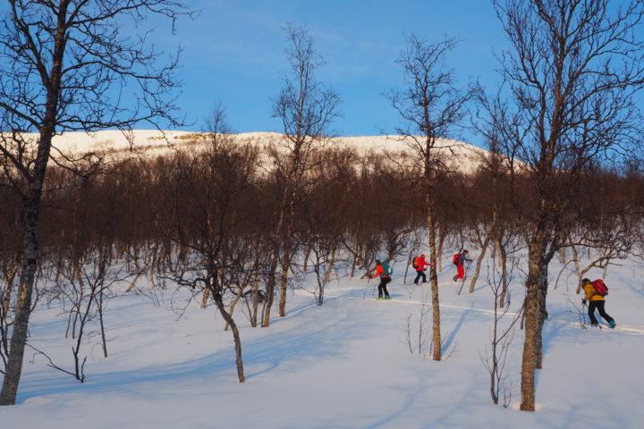 ski de rqando dans les fjords de Norvège