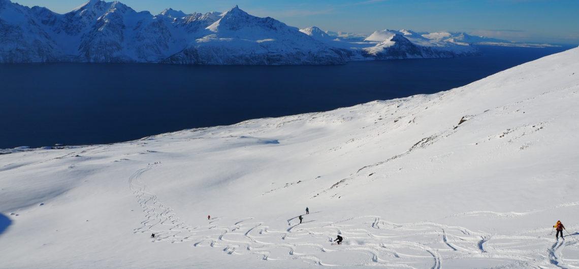 Ski face aux fjord et aux Alpes de Lyngen