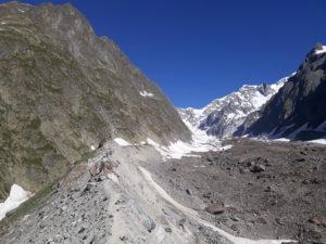 La moraine du glacier de Miage et ses bouquetins