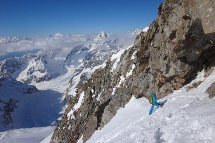 Cat rejoint l'arête sud-ouest de l'Aletschhorn